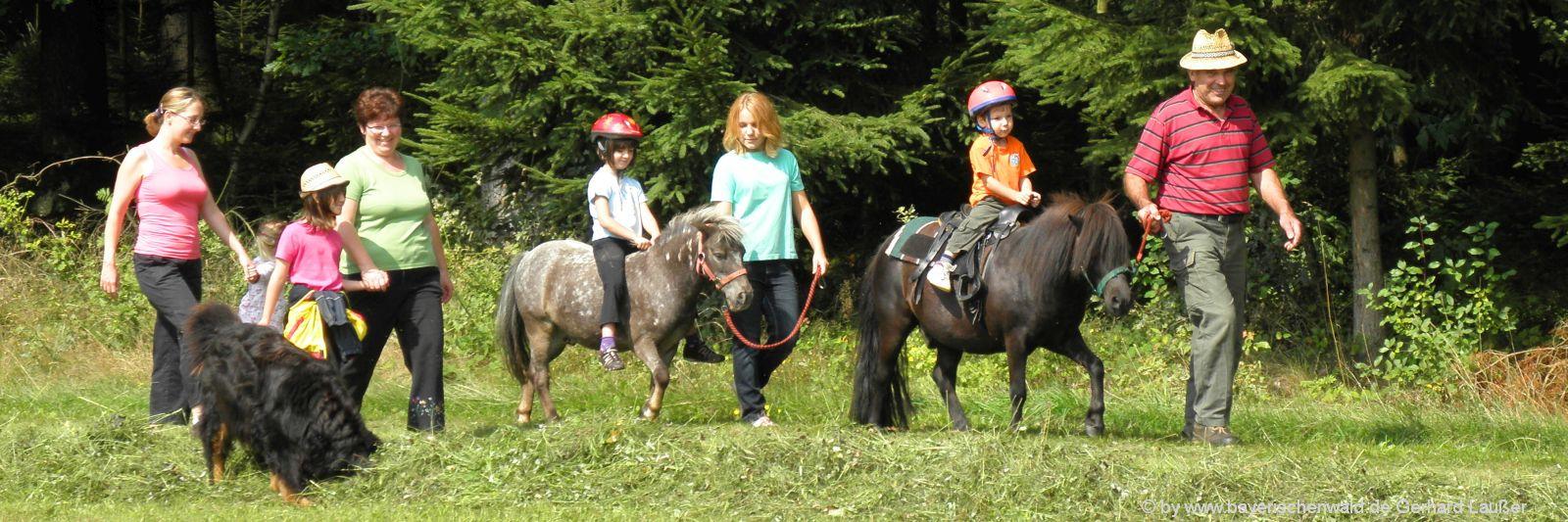 Bayerischer Wald Reiturlaub für Kinder am Bauernhof
