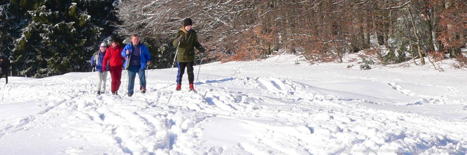 Bayerischer Wald Skiurlaub mit Kindern