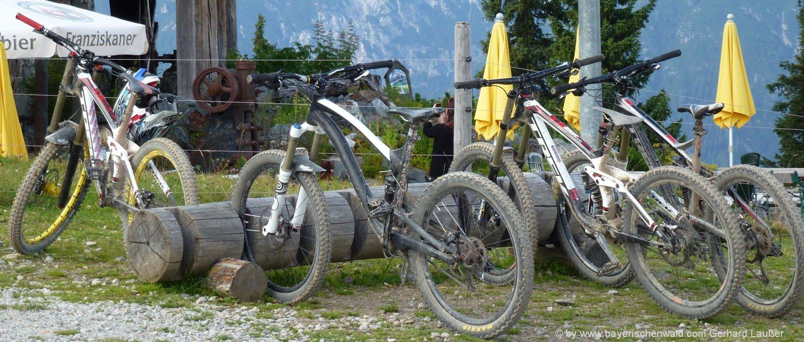 radurlaub-oberpfalz-freizeit-mountainbike-fahren